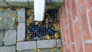 10 Tips for preventing Blocked Stormwater Drains